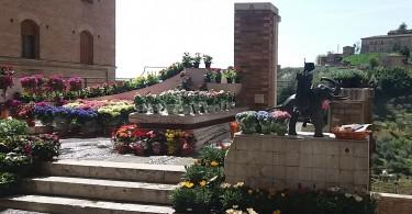 fiori torre