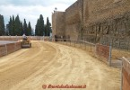 castiglion fiorentino