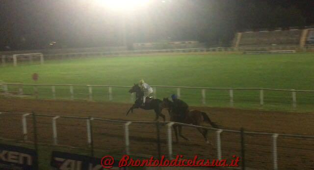 amazzoni (3)