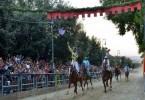 FERMO TOPALLI VINCE 2017 BRICCONA DA CLODIA