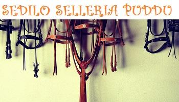 SELLERIA_Puddu