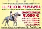 1p-27 MAGGIO 2018 GUASILA purosangue