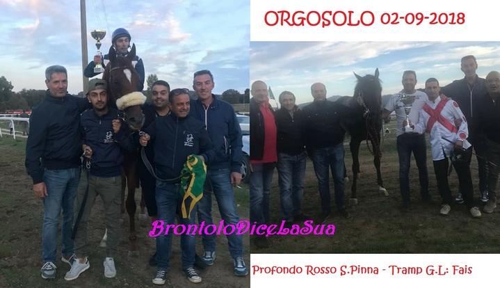 ORGOSOLO 2-9-2018